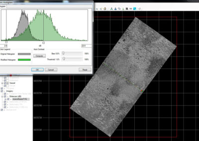 "TRITON IMAGING, INC. Offshore Survey Software ""Perspective Mosaic"""
