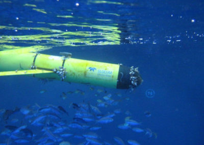 Teledyne WEBB RESEARCH autonomous Underwater Glider SLOCUM carrying various sensors, performing a sinusoidal movement through the water column, sending data by satellite every time it surfaces, and reaching a preprogrammed destination without electrical power