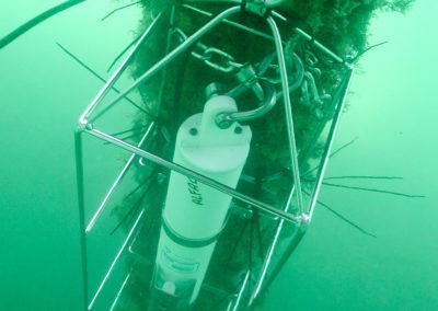 SeaBird Scientific CTDs work even when marine growth is around