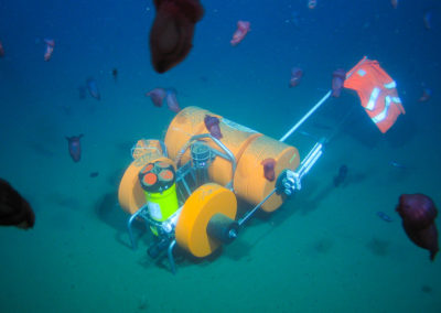 Von FS SONNE mittels Tiefsee-ROV abgesetzter Mini-Lander mit Teledyne RD Instruments Doppler-Strömungsmesser ADCP