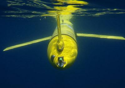 Teledyne WEBB RESEARCH autonomer Unterwassergleiter SLOCUM von achtern gesehen